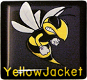 yellowjacket 1x1 Computer Case Domed Label